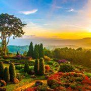 Bahçe Manzaranıza Odaklanabilir ve Sade Bir Dekorasyonun Keyfine Varabilirsiniz