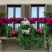 Taze ve Temiz Bir Havayı Balkonunuzdan Geçirerek Evinize Almak İster misiniz?