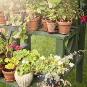 Müstakil Evlerde Dış Mekan Çiçek Dekorasyonu Nasıl Yapılır?